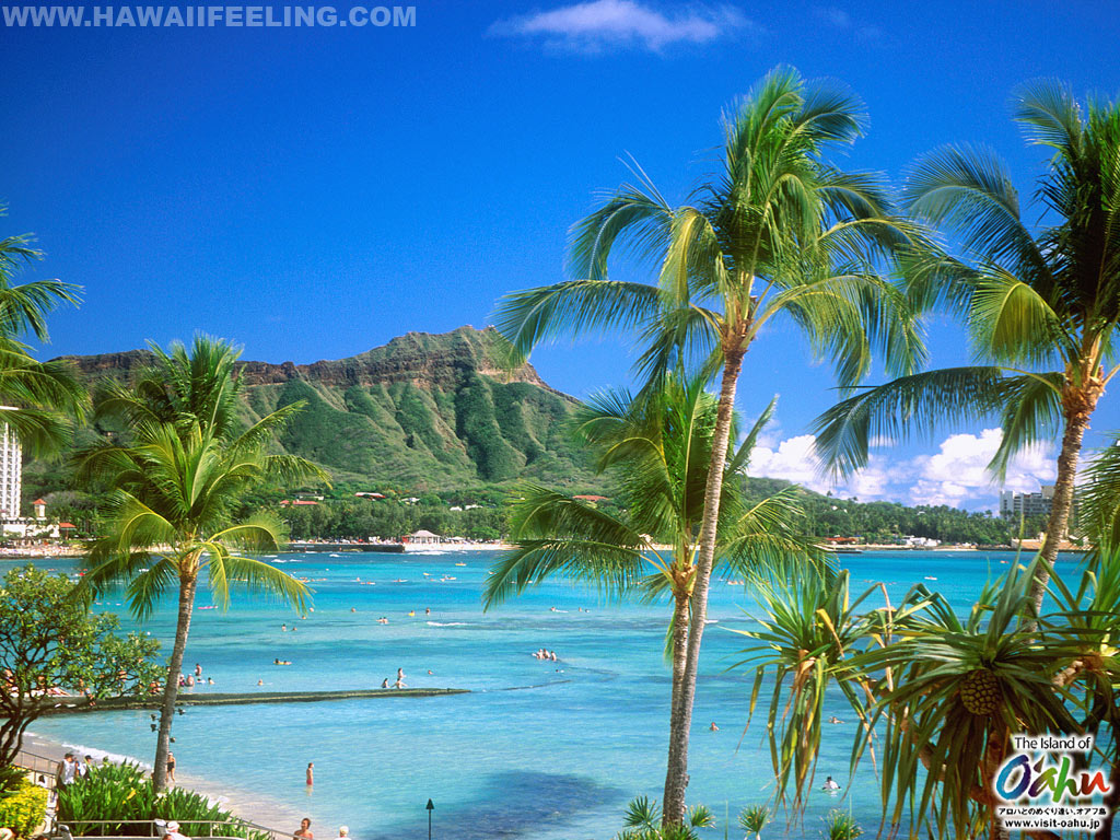 Nature photo wallpaper of hawaii